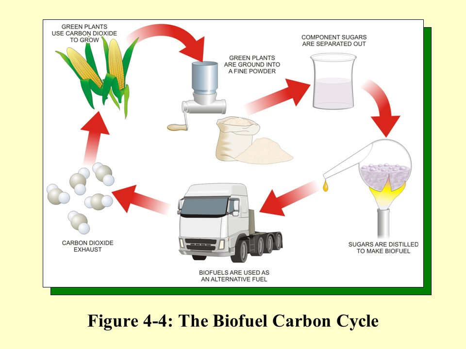 Figure 4-4: The Biofuel Carbon Cycle