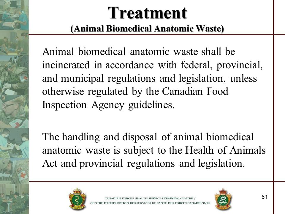Treatment (Animal Biomedical Anatomic Waste) Animal biomedical anatomic waste shall be incinerated in accordance with federal, provincial, and municip