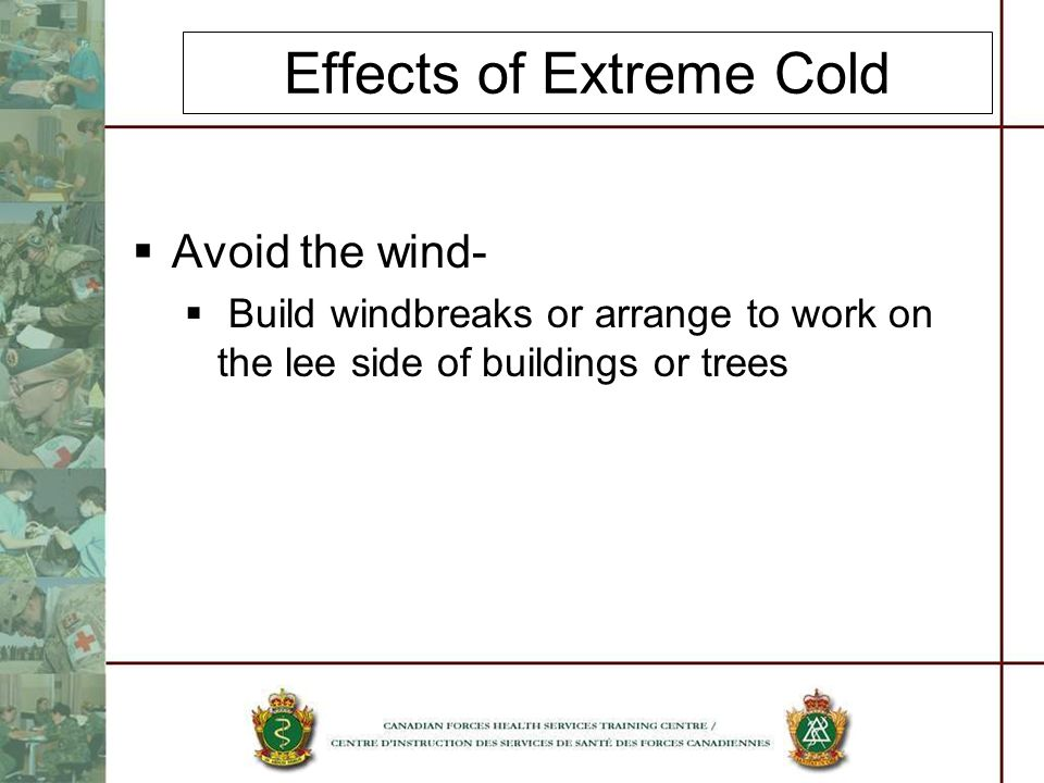 Effects of Extreme Cold Avoid the wind- Build windbreaks or arrange to work on the lee side of buildings or trees