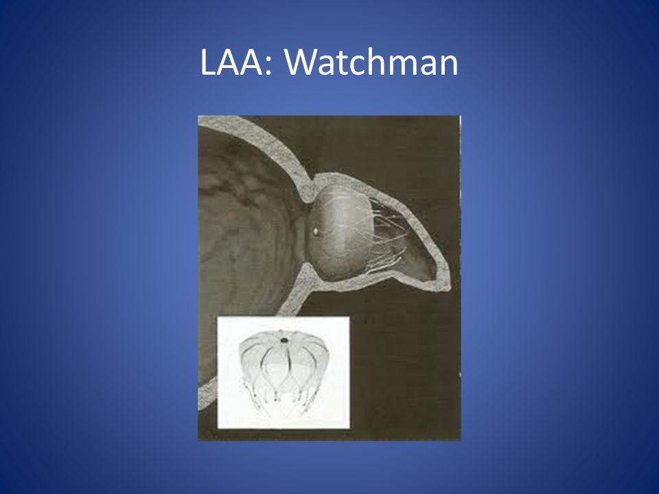 LAA: Watchman