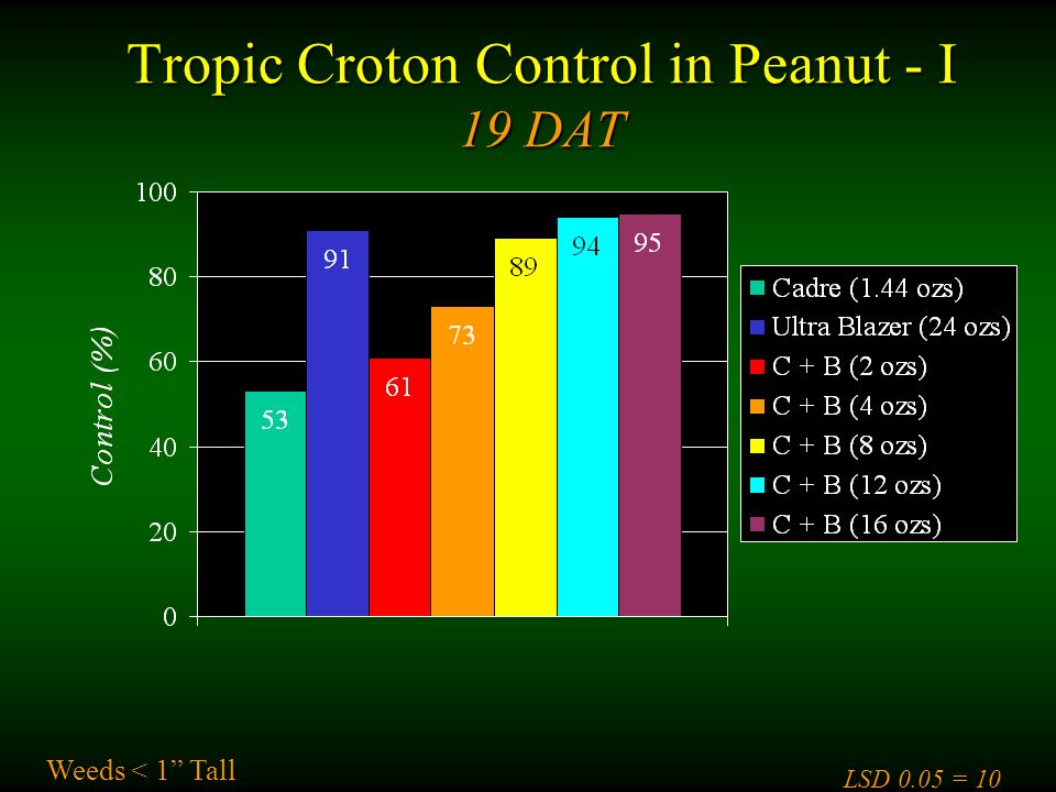 Tropic Croton Control in Peanut - I 19 DAT Weeds < 1 Tall LSD 0.05 = 10