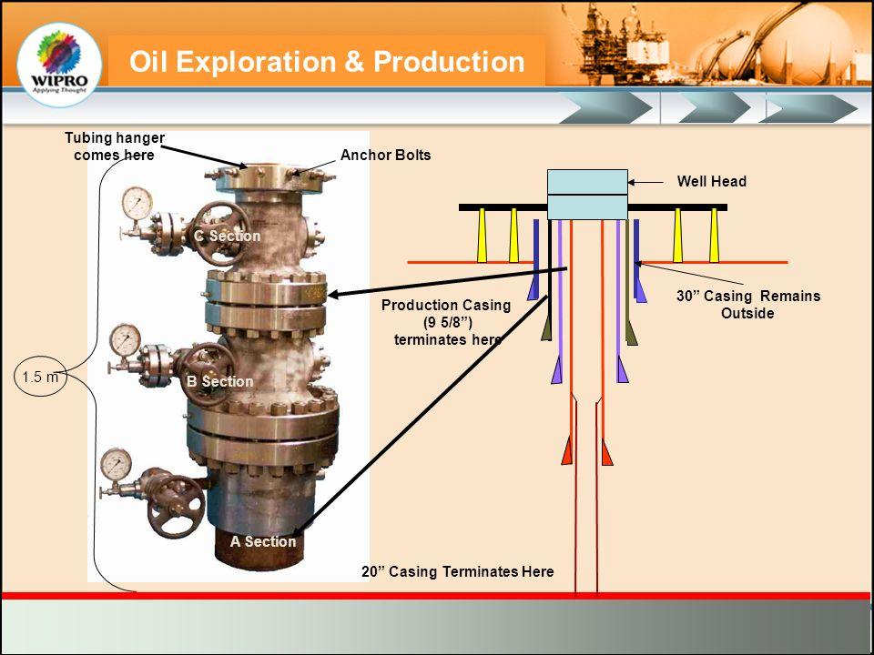 Oil Exploration & Production 1.5 m 20 Casing Terminates Here Tubing hanger comes here Production Casing (9 5/8) terminates here A Section B Section C