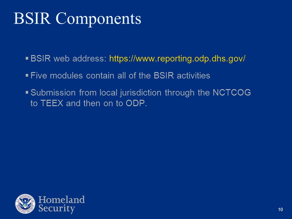 10 BSIR Components BSIR web address: https://www.reporting.odp.dhs.gov/ Five modules contain all of the BSIR activities Submission from local jurisdic