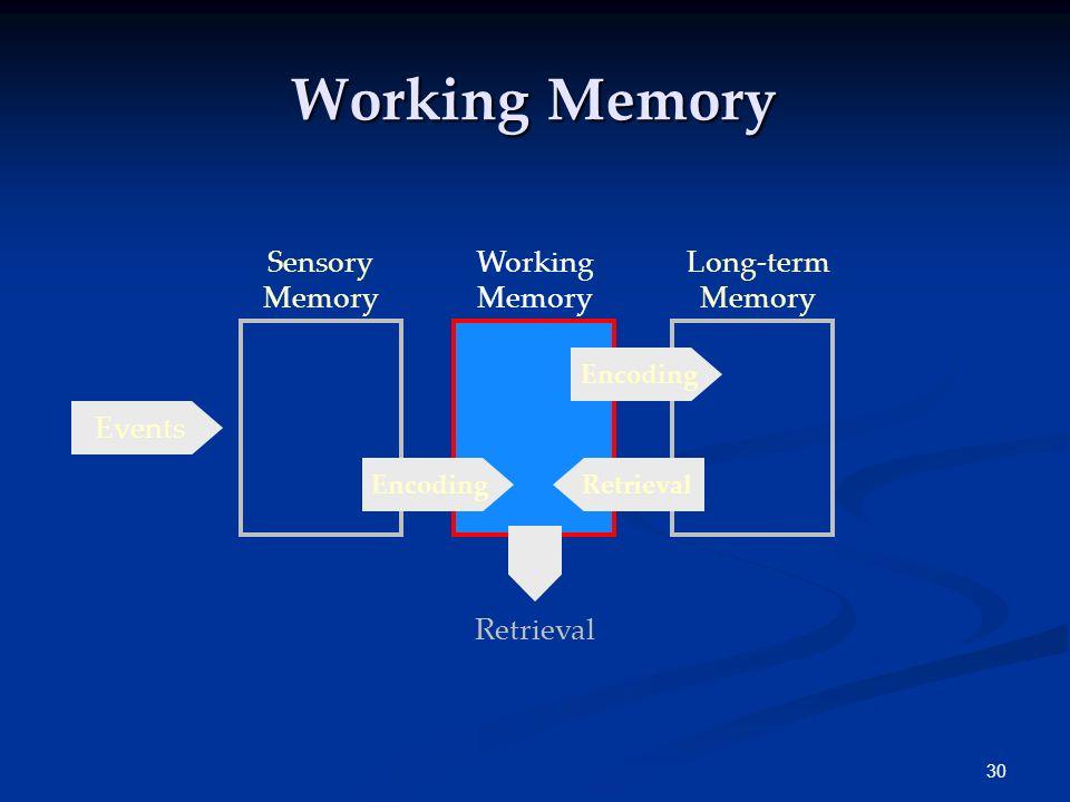 29 Sensory Memories Iconic 0.5 sec. long Echoic 3-4 sec. long Hepatic < 1 sec. long The duration of sensory memory varies for the different senses.