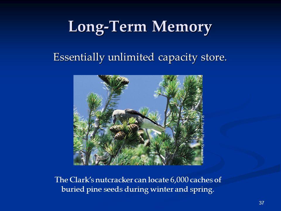 36 Long-Term Memory Sensory Memory Working Memory Long-term Memory Encoding RetrievalEncoding Events Retrieval