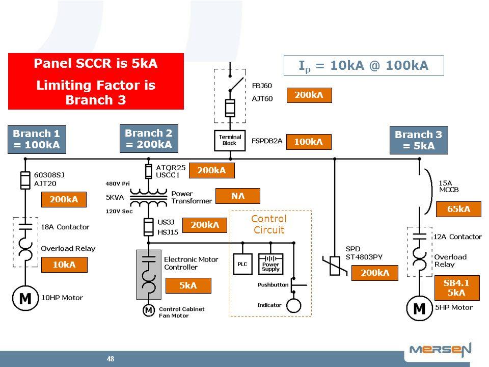 48 Branch 1 = 100kA Branch 2 = 200kA Branch 3 = 5kA SB4.1 5kA Control Circuit 10kA 200kA 5kA 200kA 65kA 100kA 200kA NA 200kA I p = 10kA @ 100kA Panel