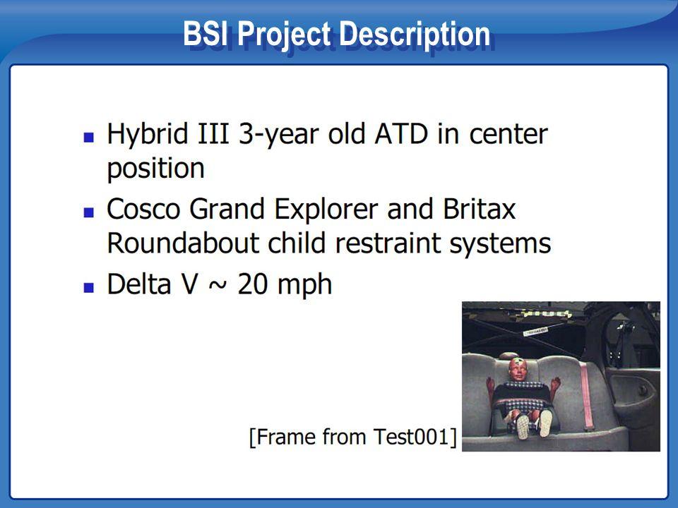 BSI Project Description