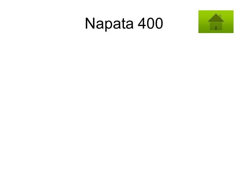 Napata 400