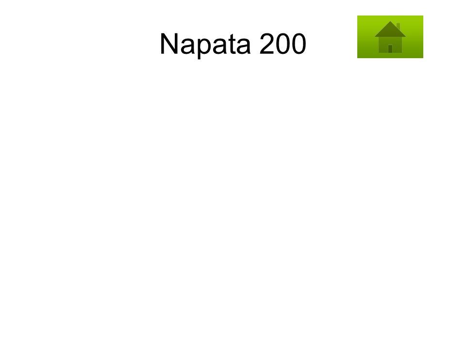 Napata 200