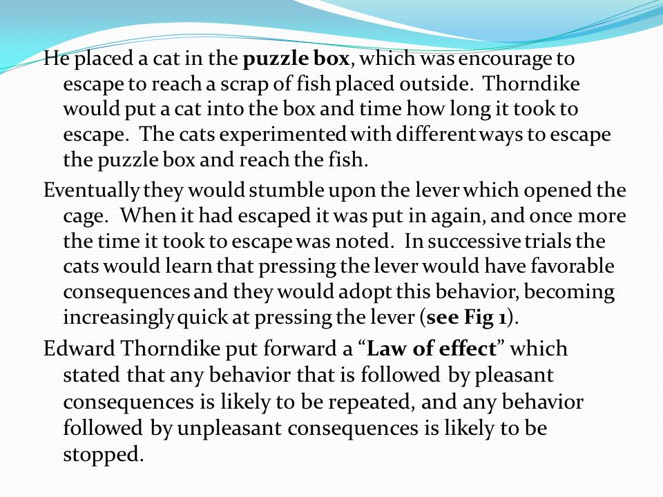 He placed a cat in the puzzle box, which was encourage to escape to reach a scrap of fish placed outside. Thorndike would put a cat into the box and t