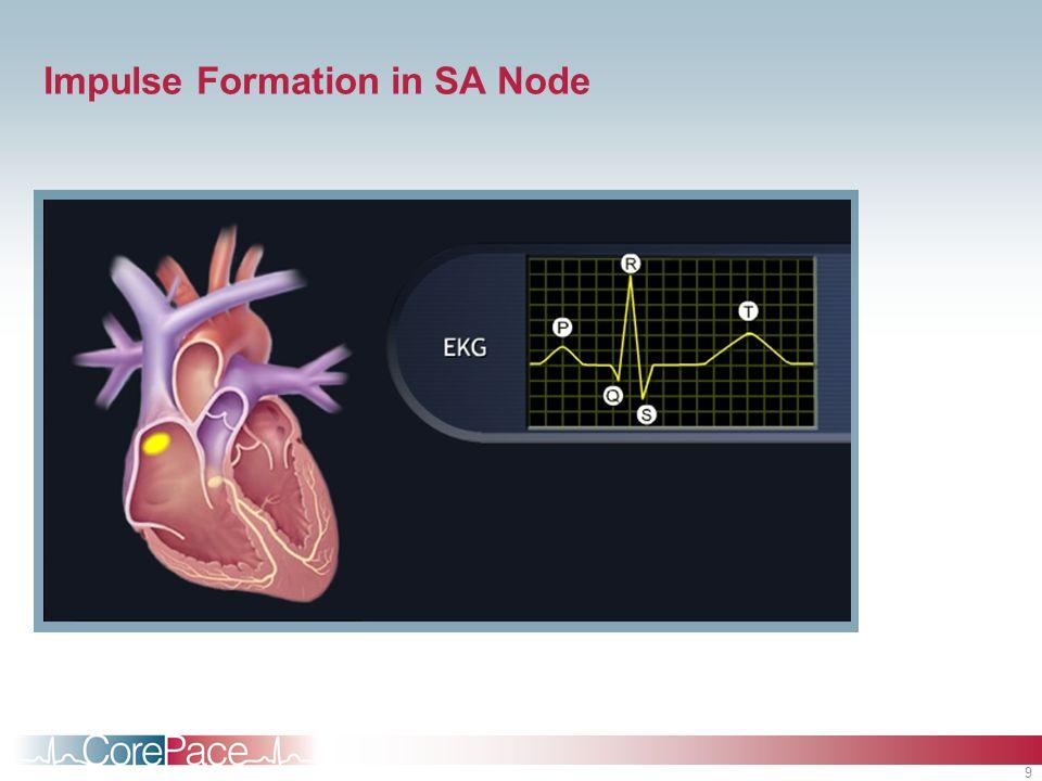 9 Impulse Formation in SA Node
