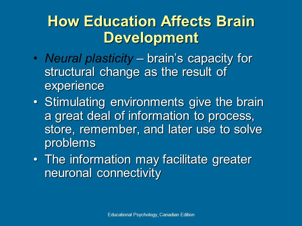 Educational Psychology, Canadian Edition How Education Affects Brain Development – brains capacity for structural change as the result of experienceNe