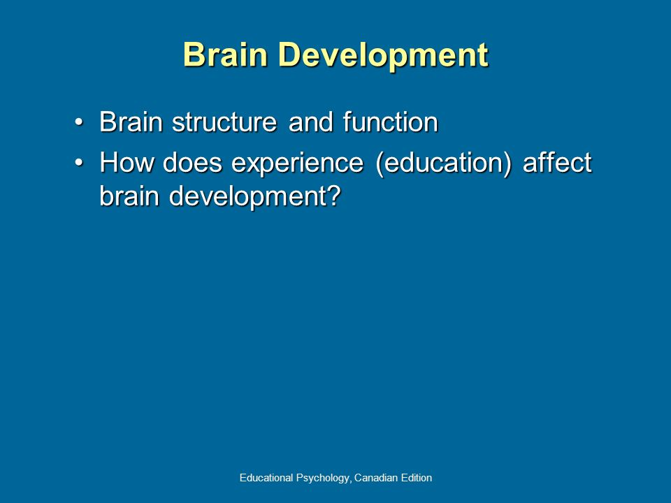 Educational Psychology, Canadian Edition Brain Development Brain structure and functionBrain structure and function How does experience (education) af