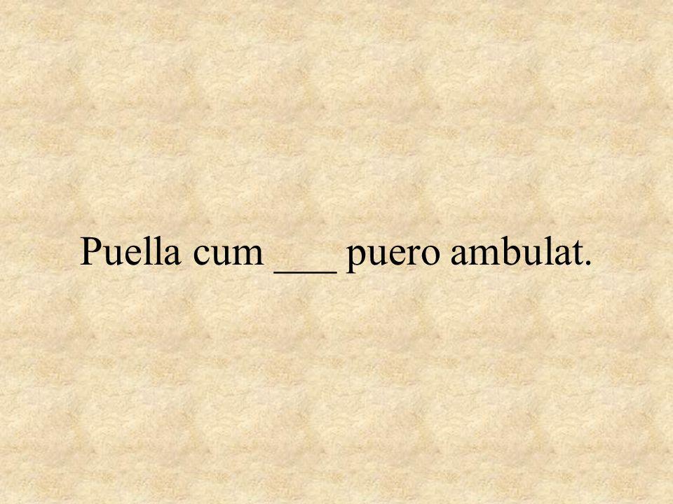 Puella cum ___ puero ambulat.