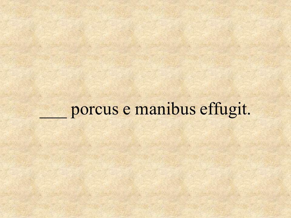 ___ porcus e manibus effugit.