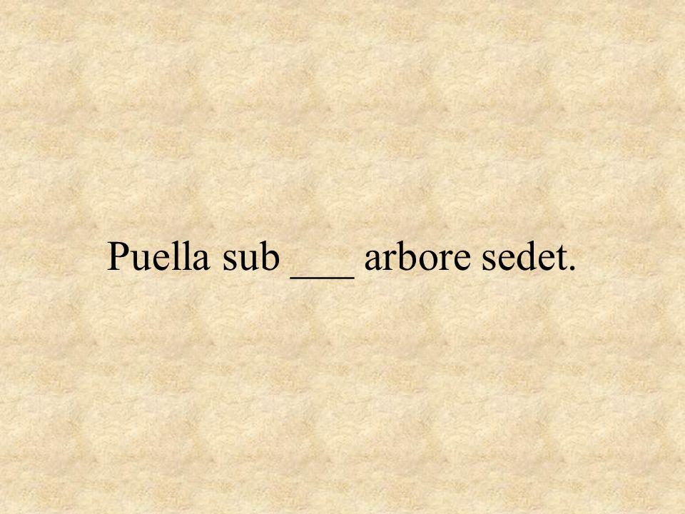 Puella sub ___ arbore sedet.