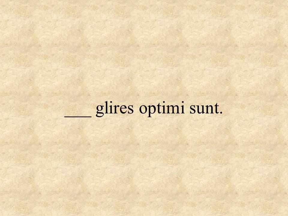 ___ glires optimi sunt.