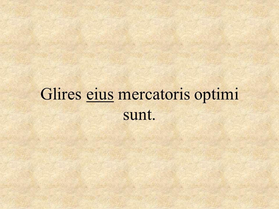Glires eius mercatoris optimi sunt.