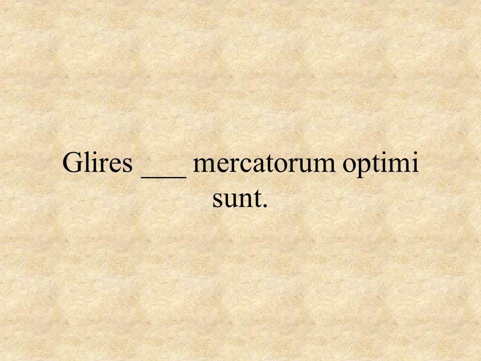 Glires ___ mercatorum optimi sunt.