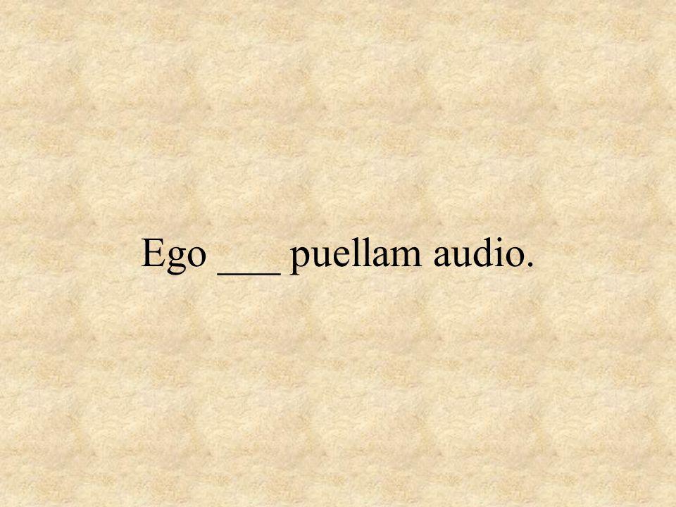 Ego ___ puellam audio.