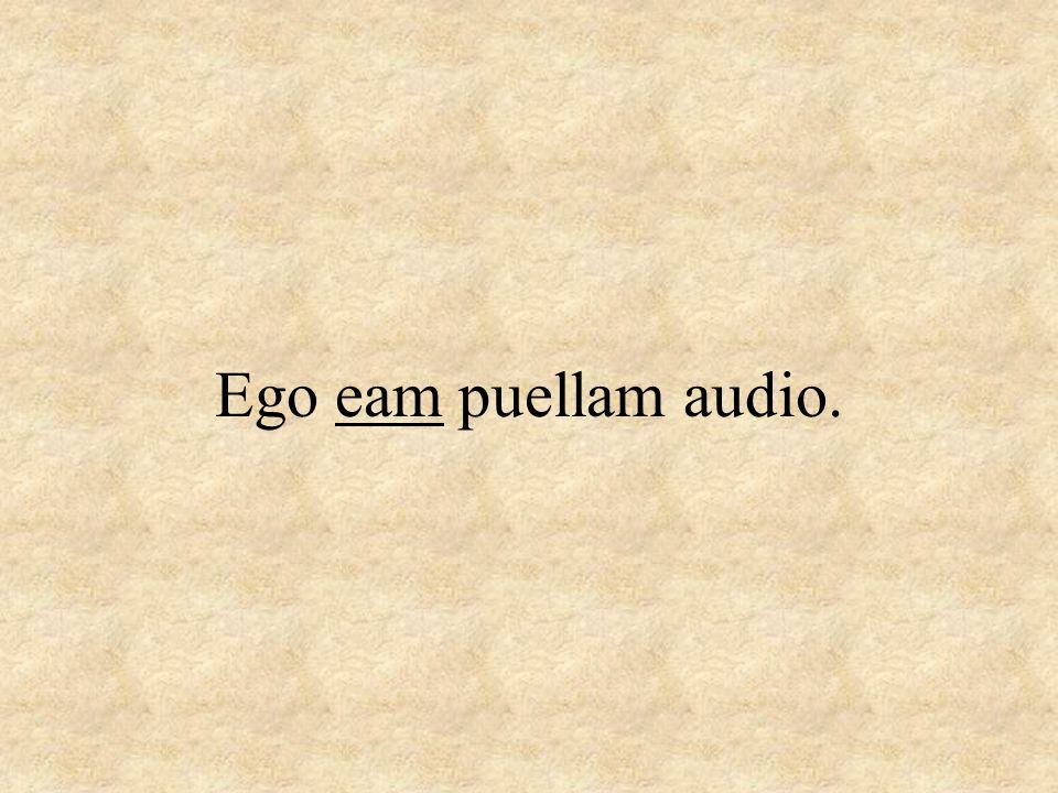 Ego eam puellam audio.