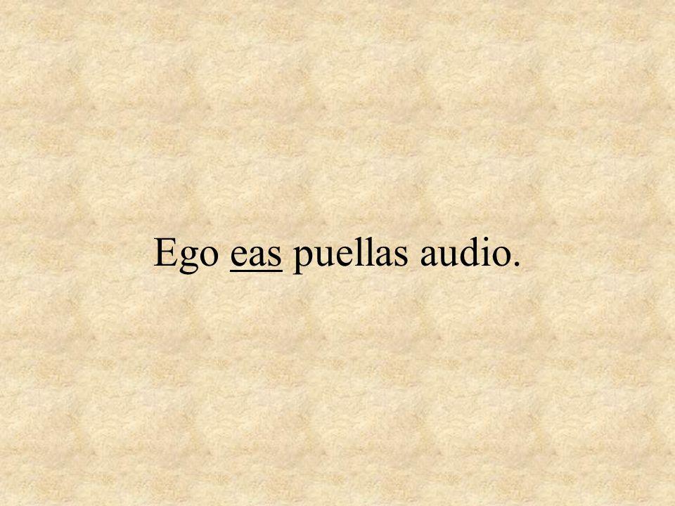 Ego eas puellas audio.