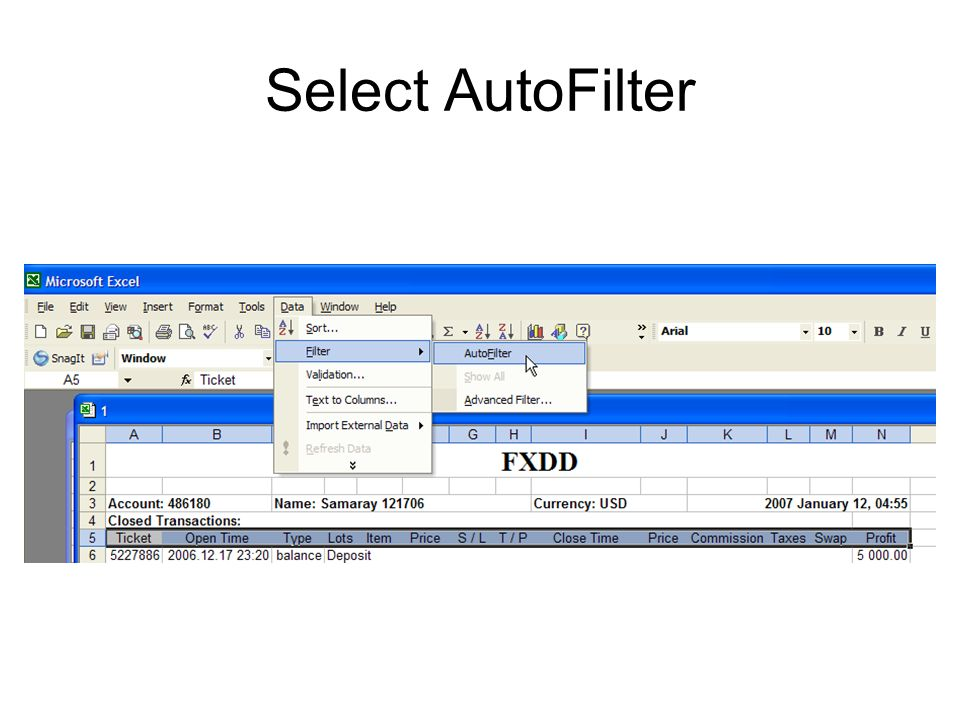 Select AutoFilter