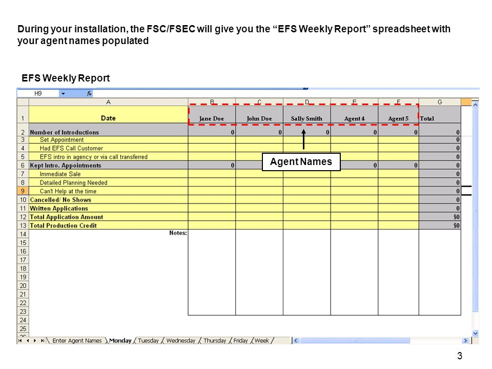 4 EFS Weekly Report At the end of each day change the data and enter data in the yellow portions of each tab (Do not enter data in grey boxes, as there are formulas that will total your data) In entering data, complete all fields.