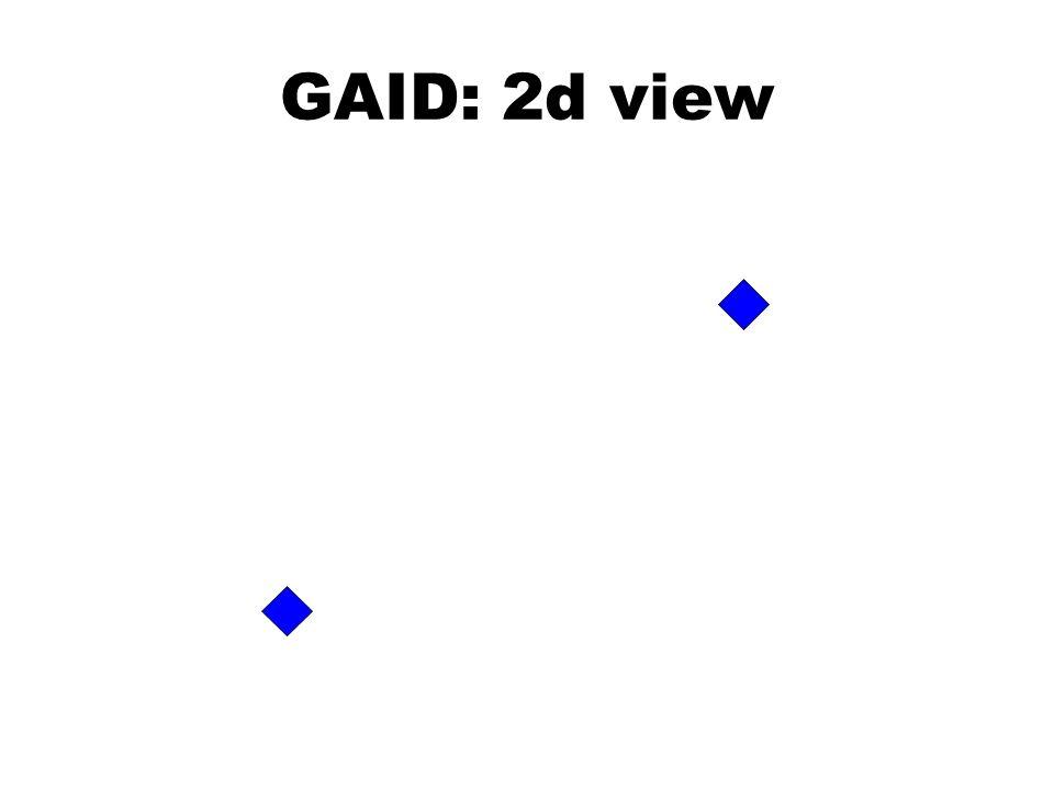 GAID: 2d view