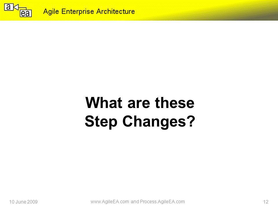 What are these Step Changes 10 June 2009 www.AgileEA.com and Process.AgileEA.com 12