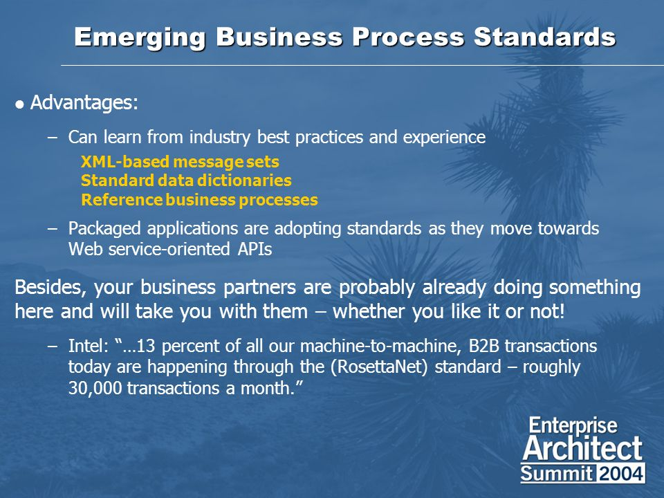 Emerging Business Process Standards Advantages: –Can learn from industry best practices and experience XML-based message sets Standard data dictionaries Reference business processes –Packaged applications are adopting standards as they move towards Web service-oriented APIs Besides, your business partners are probably already doing something here and will take you with them – whether you like it or not.
