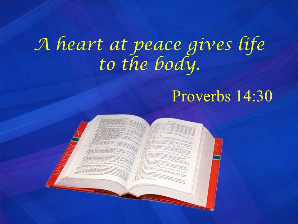 A heart at peace gives life to the body. Proverbs 14:30