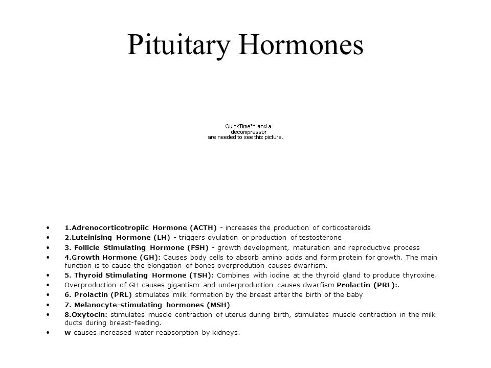 Pituitary Hormones 1.Adrenocorticotropiic Hormone (ACTH) - increases the production of corticosteroids 2.Luteinising Hormone (LH) - triggers ovulation