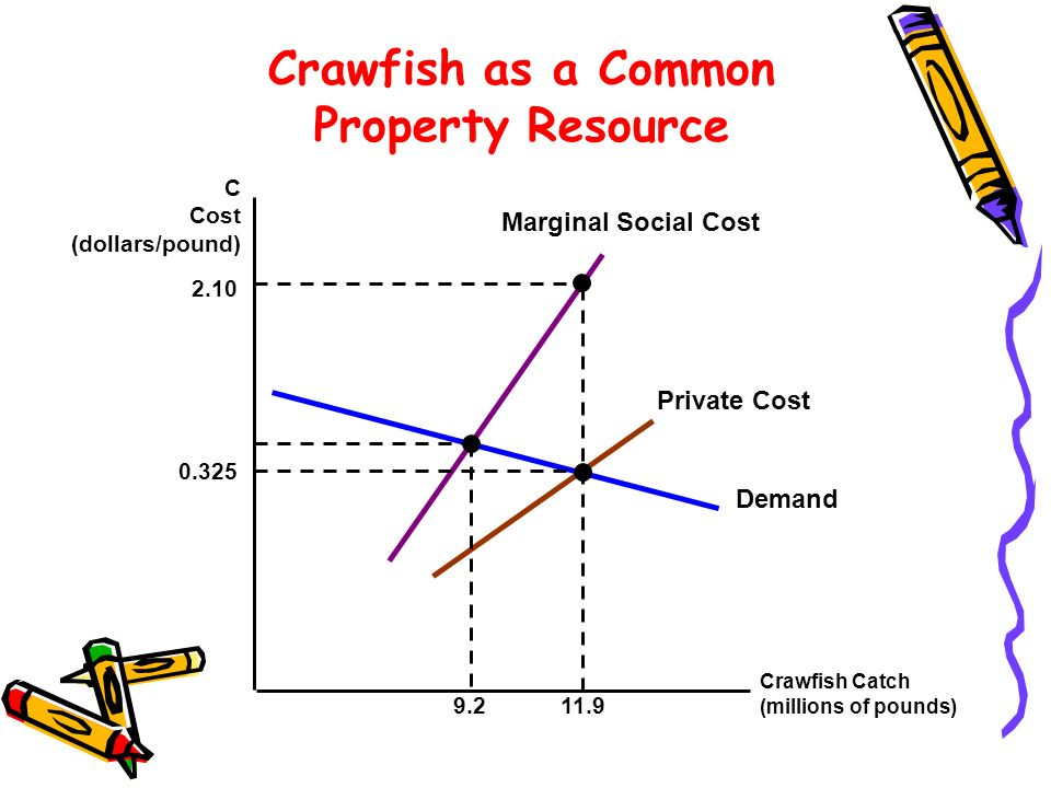 Crawfish Catch (millions of pounds) C Cost (dollars/pound) Demand Marginal Social Cost Private Cost Crawfish as a Common Property Resource 11.9 2.10 9
