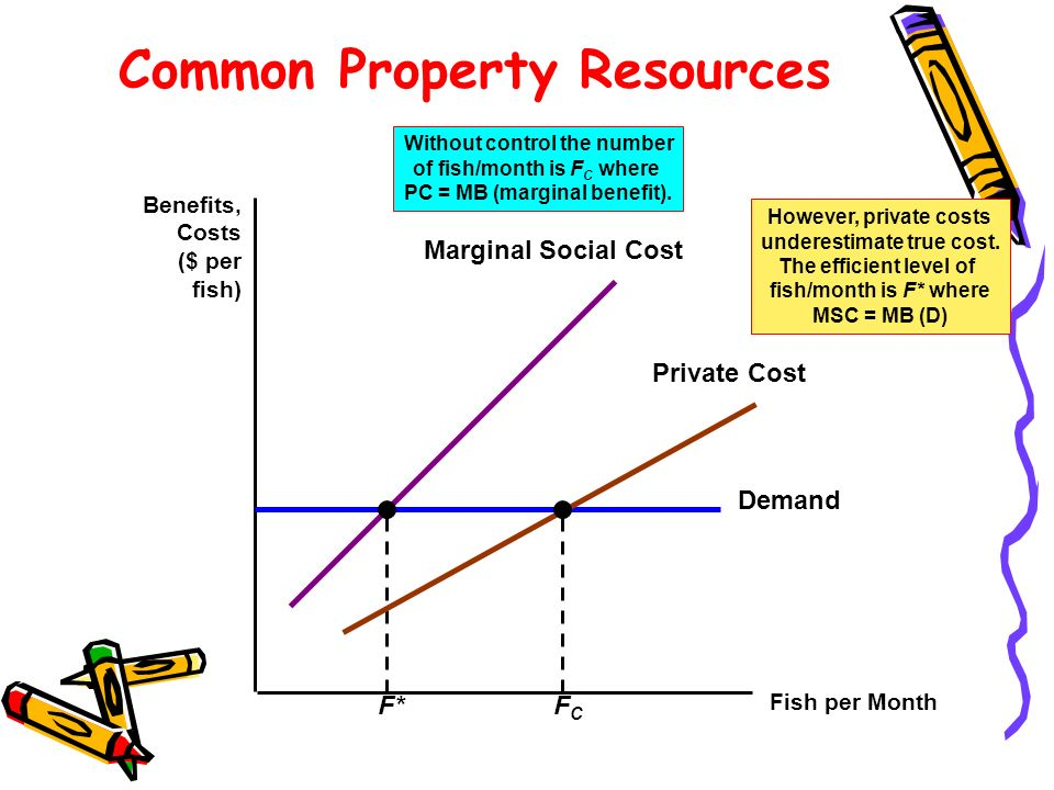 Common Property Resources Fish per Month Benefits, Costs ($ per fish) Demand However, private costs underestimate true cost. The efficient level of fi
