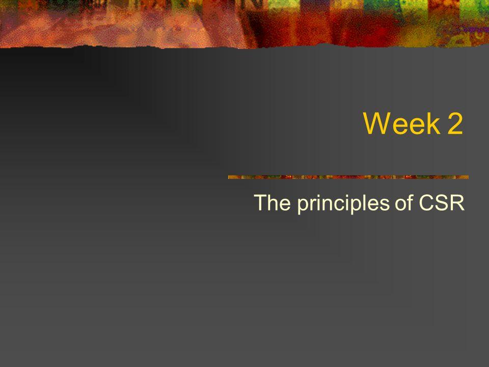 Alternative principles of CSR Enlightened self-interest Utilitarianism Citizenship Being in society
