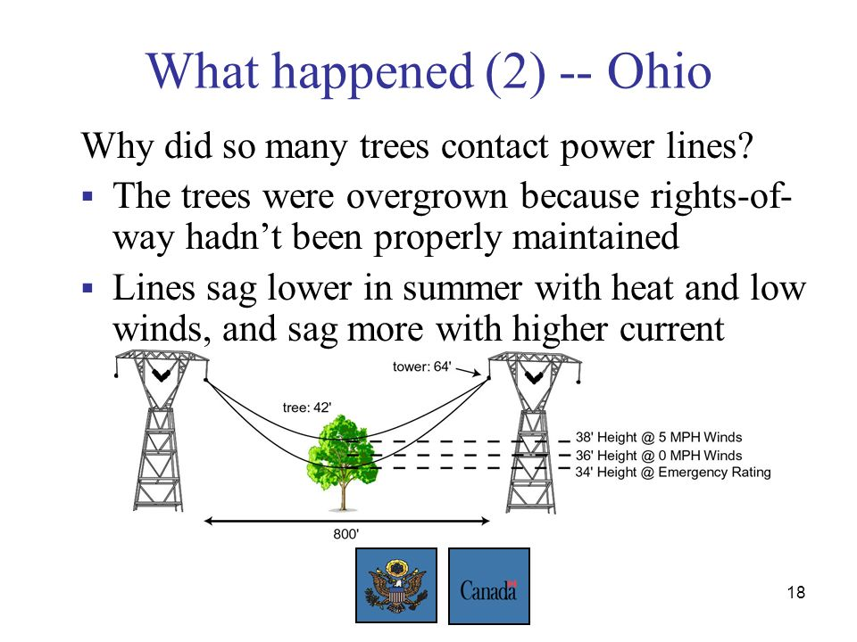18 What happened (2) -- Ohio Why did so many trees contact power lines.