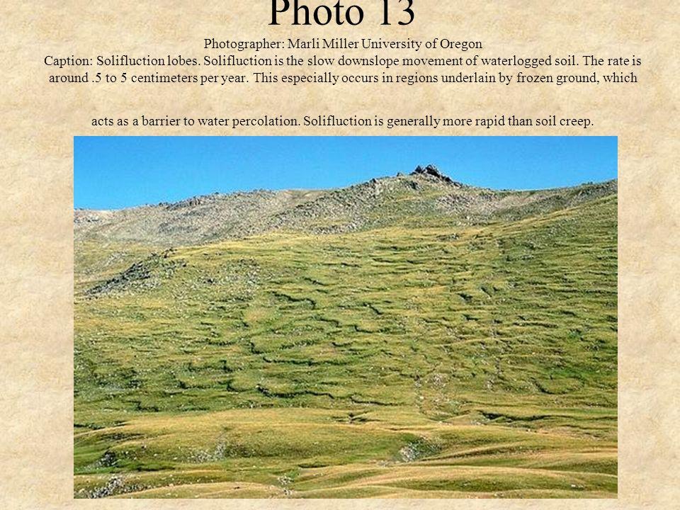 Photo 13 Photographer: Marli Miller University of Oregon Caption: Solifluction lobes. Solifluction is the slow downslope movement of waterlogged soil.