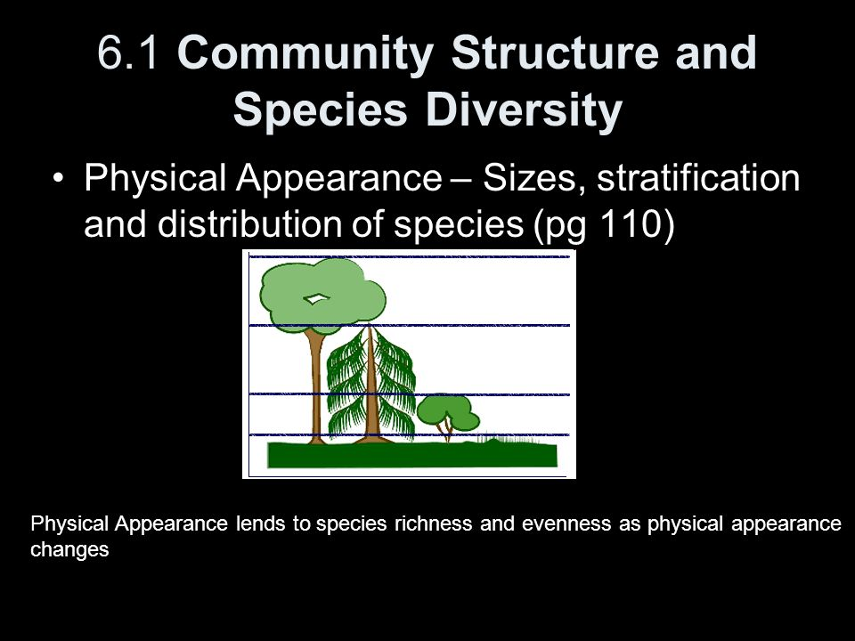 6.1 Community Structure and Species Diversity Physical Appearance – Sizes, stratification and distribution of species (pg 110) Physical Appearance len