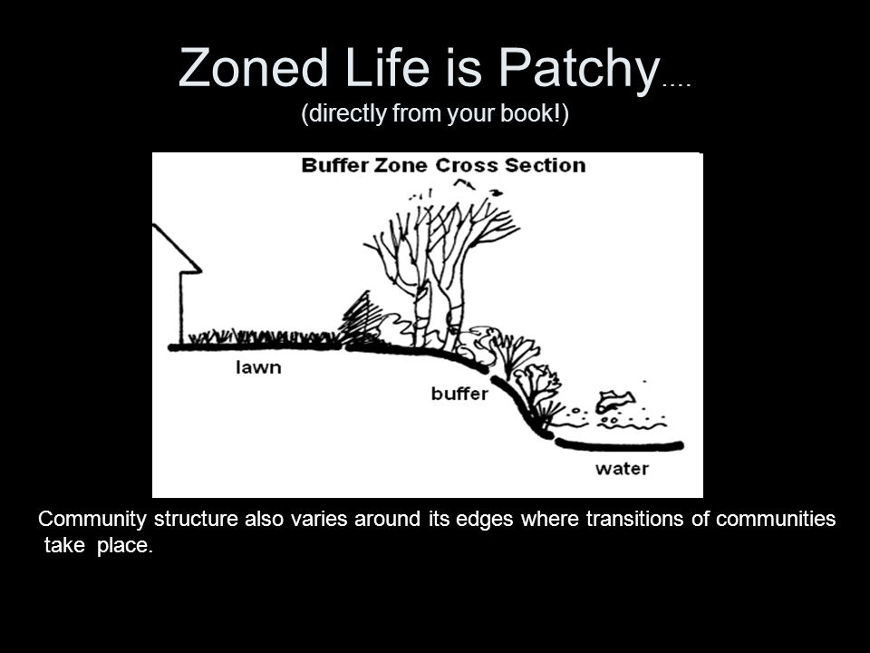 Zoned Life is Patchy …. (directly from your book!) Community structure also varies around its edges where transitions of communities take place.