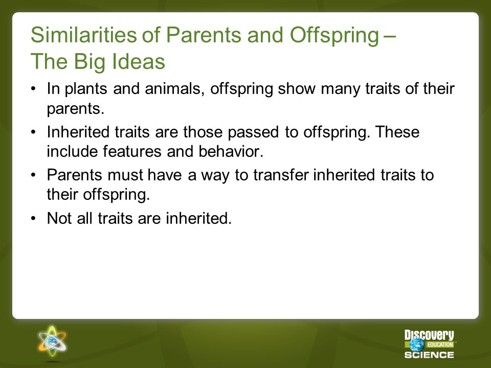 Similarities of Parents and Offspring – The Big Ideas In plants and animals, offspring show many traits of their parents. Inherited traits are those p