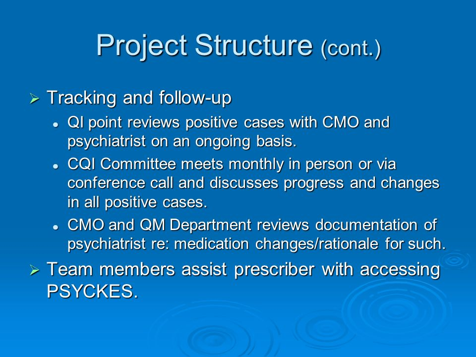 Project Structure (cont.) Tracking and follow-up Tracking and follow-up QI point reviews positive cases with CMO and psychiatrist on an ongoing basis.