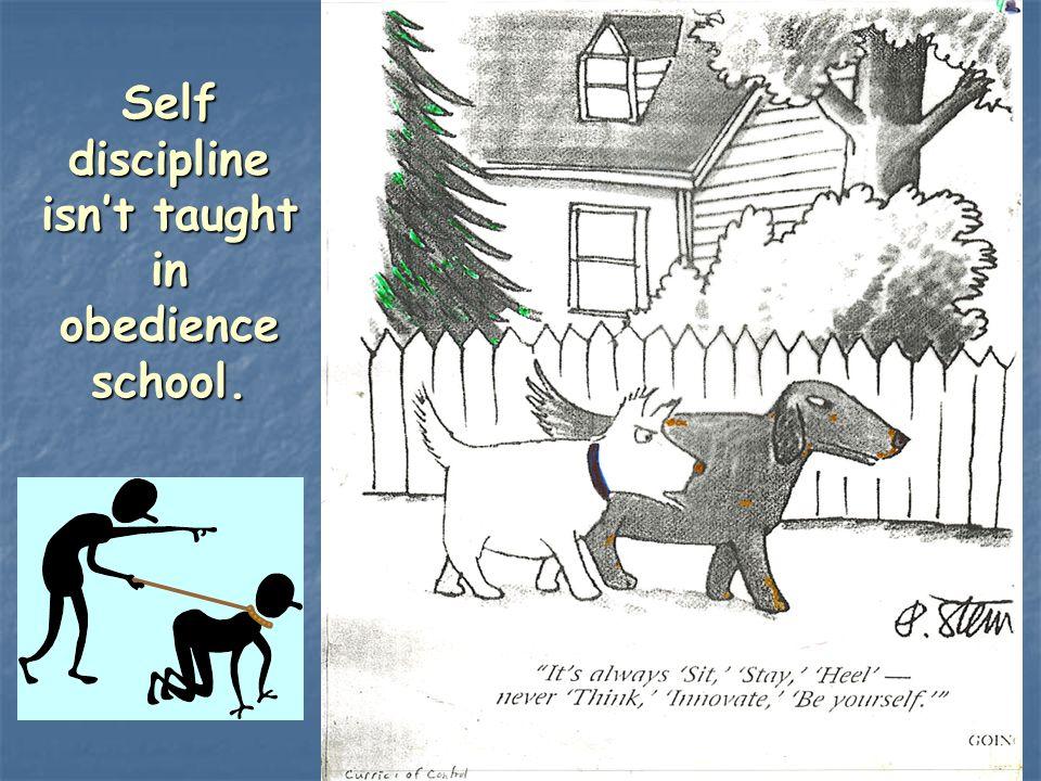 5 Self discipline isnt taught in obedience school.