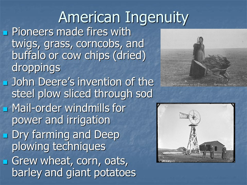 American Ingenuity Pioneers made fires with twigs, grass, corncobs, and buffalo or cow chips (dried) droppings Pioneers made fires with twigs, grass,