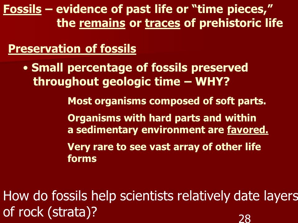 Fossils – evidence of past life or time pieces, the remains or traces of prehistoric life Preservation of fossils Small percentage of fossils preserve
