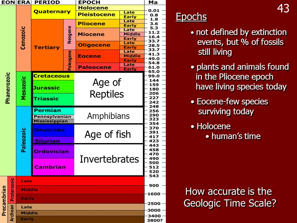 Epochs not defined by extinction events, but % of fossils still living plants and animals found in the Pliocene epoch have living species today Eocene