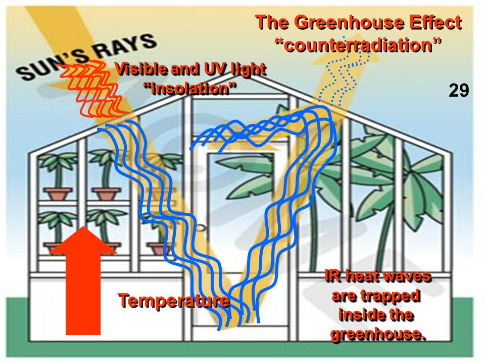 Visible and UV light insolation insolation IR heat waves are trapped inside the greenhouse. IR heat waves are trapped inside the greenhouse. The Green