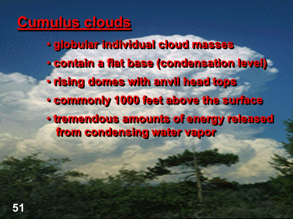 Cumulus clouds globular individual cloud masses globular individual cloud masses contain a flat base (condensation level) contain a flat base (condens