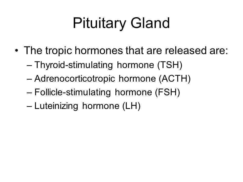 Pituitary Gland The tropic hormones that are released are: –Thyroid-stimulating hormone (TSH) –Adrenocorticotropic hormone (ACTH) –Follicle-stimulatin