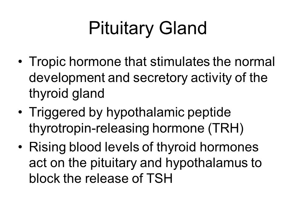 Pituitary Gland Tropic hormone that stimulates the normal development and secretory activity of the thyroid gland Triggered by hypothalamic peptide th